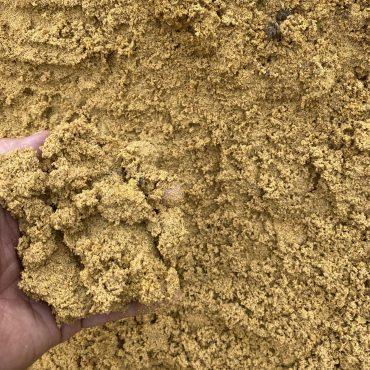 Brick Sand Yellow