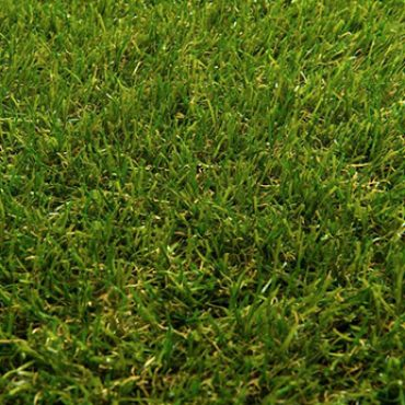 Natural Synthetic Lawn